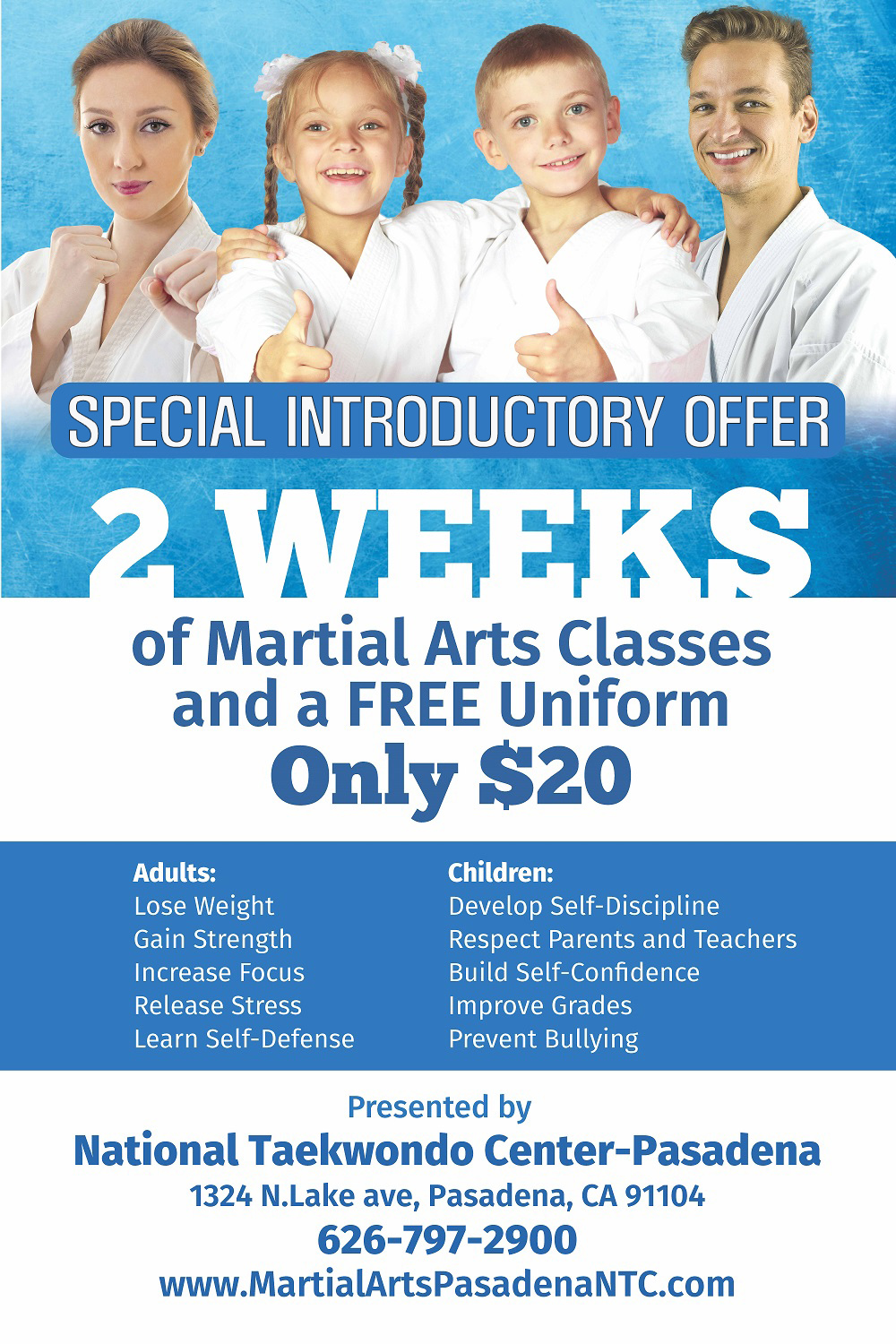 INTRODUCTORY OFFER POSTER